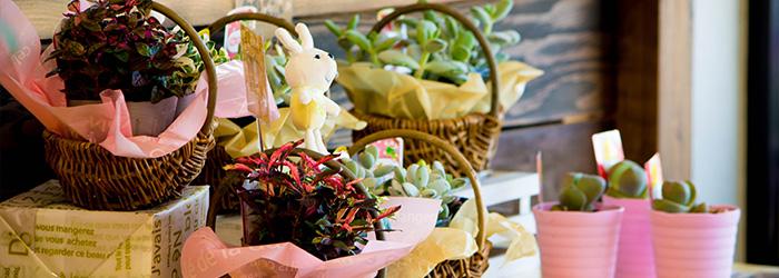 ゆう月 会席料理 懐石料理 お祝い 慶事 誕生日 綾部 舞鶴 福知山 京都 寄せかご 寄せ植え アレンジメント 花束 ゆいまーる