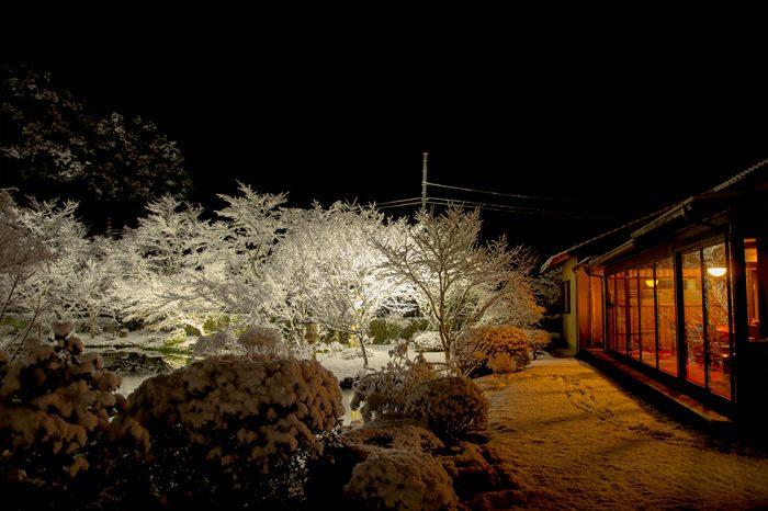 ゆう月 冬の庭園 雪景色 ライトアップ