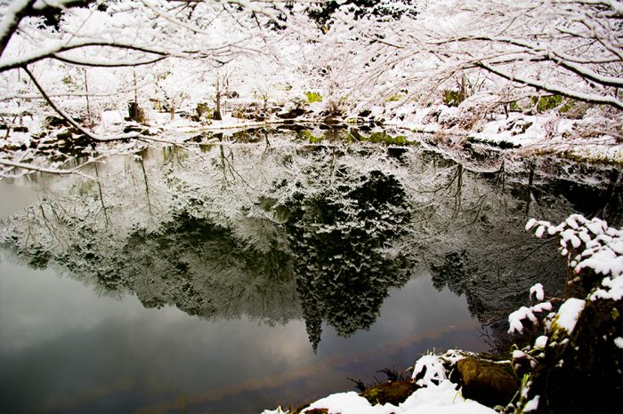 ゆう月 冬の庭園 池 水鏡 雪景色