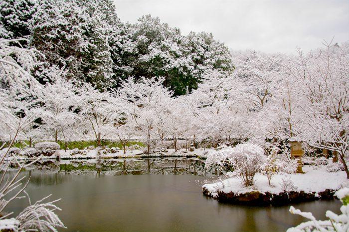 冬の庭園 借景 水墨画のよう