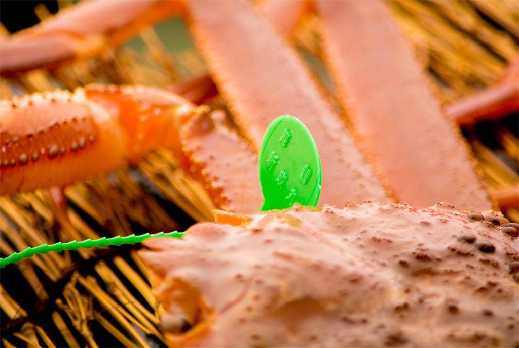 綾部の料亭 ゆう月 冬の料理 ズワイガニ 松葉がに 蟹鍋