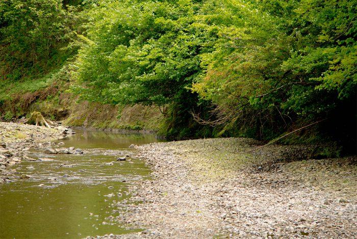 綾部の料亭 ゆう月 海の京都 綾部むすび 水源の里