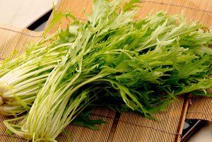 綾部の料亭 ゆう月 冬の食材 水菜