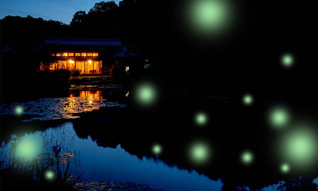 綾部のレストラン ゆう月 ホタル鑑賞 ホタル狩り ディナー 会席料理 和食