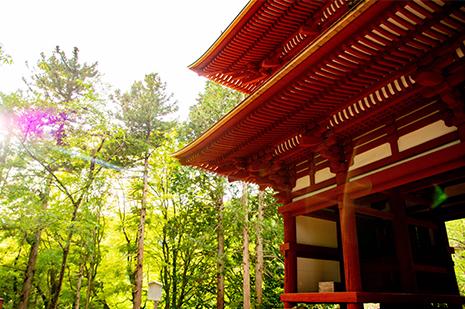 京都 ゆう月の周辺案内 観光案内 光明寺 仁王門 国宝 重要文化財