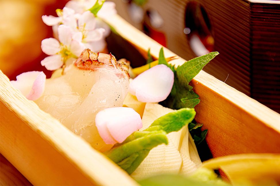 綾部の和食レストラン ゆう月の春の料理 たけのこ会席の御造り 鯛の昆布締め 筍の刺身