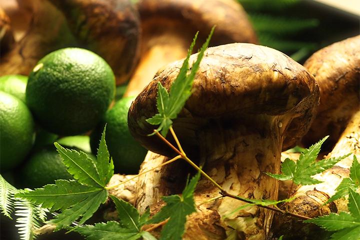 ゆう月の秋の食材 松茸