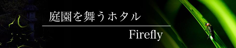 綾部の料亭 ゆう月 6月 ホタル ホタル鑑賞