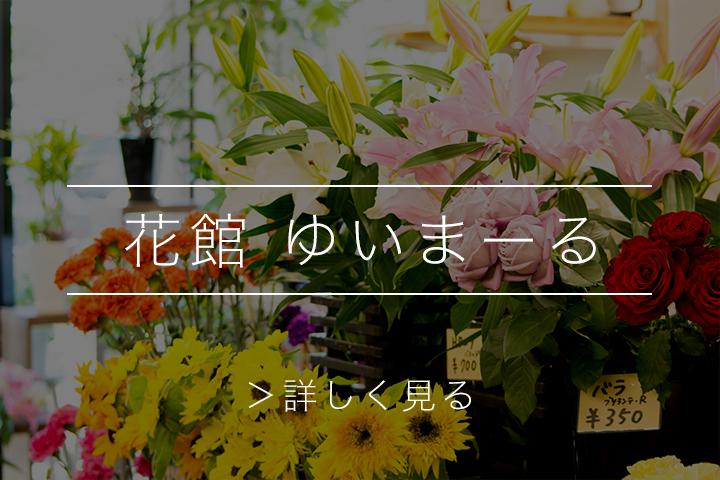 綾部 ゆう月の周辺案内 おすすめの店 花屋 ゆいまーる