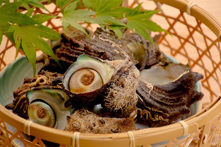 綾部の料亭 ゆう月 夏の素材 さざえ 壷焼き バーベキュー