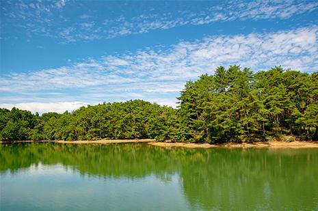 綾部 ゆう月周辺の観光施設 三段池公園 スポーツ施設 動物園 科学館