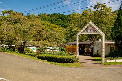 綾部 ゆう月周辺の観光施設 三段池公園 動物園 うり坊 みわちゃん