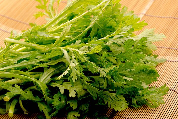 綾部の料亭 ゆう月 冬の素材の画像 京野菜 菊菜