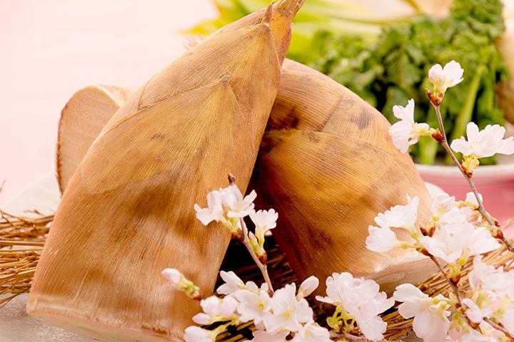 綾部の料亭 ゆう月 春の素材のページ 山菜 たけのこ 報恩寺